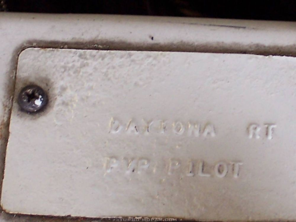 PVP Pilot Plate
