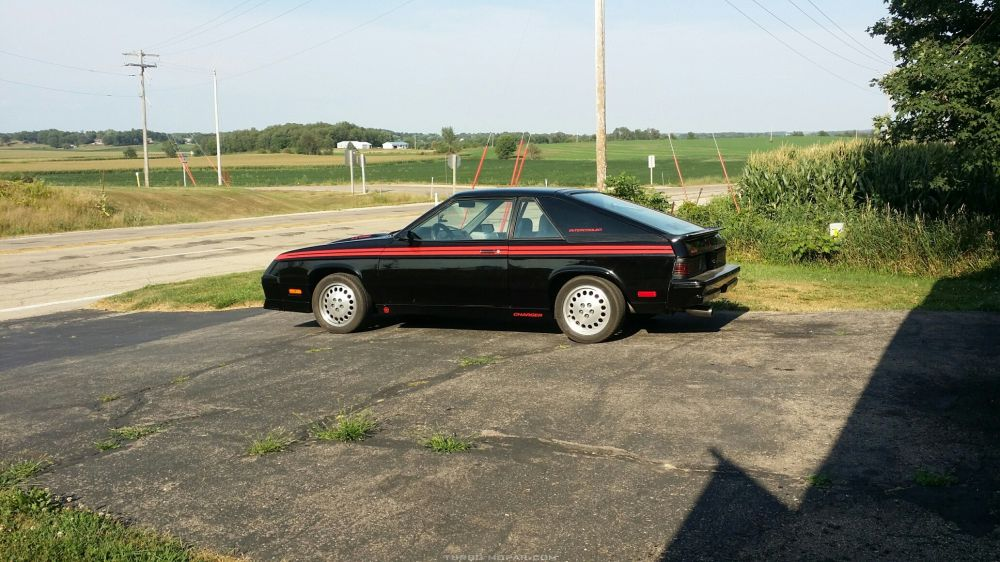 My 1985 Dodge Shelby Chager