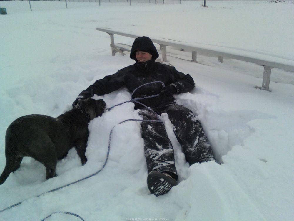 snowmastiff9